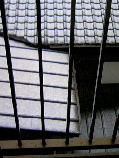 ついに雪〜